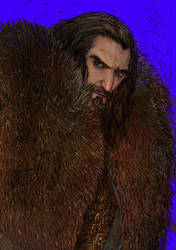 Thorin by Zzoha