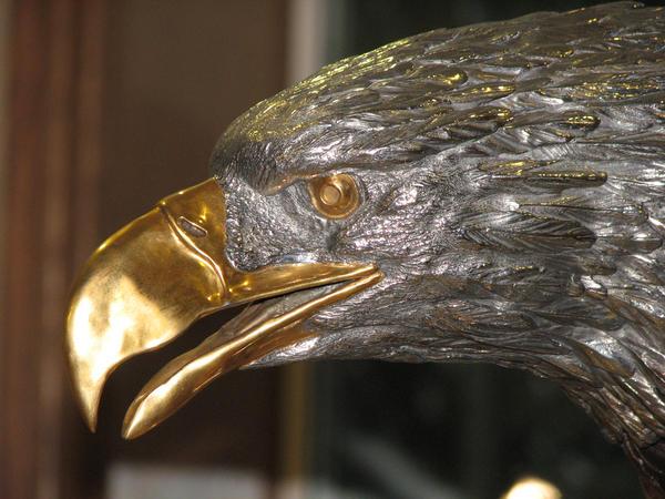 Golden Eagle by dnbarman