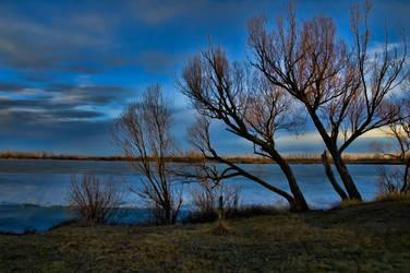 Nature Refuge 1 by mcleodan