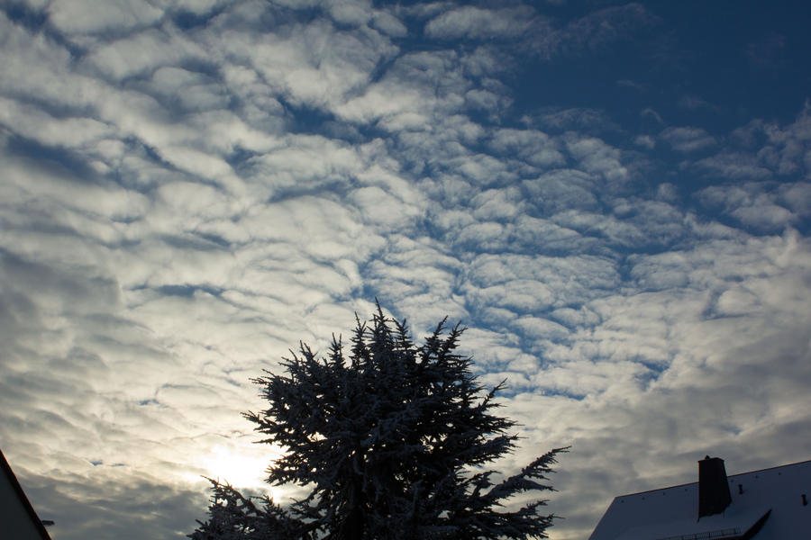 Morning Sky by mprangenberg