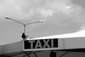 Air Taxi by MarchCoven