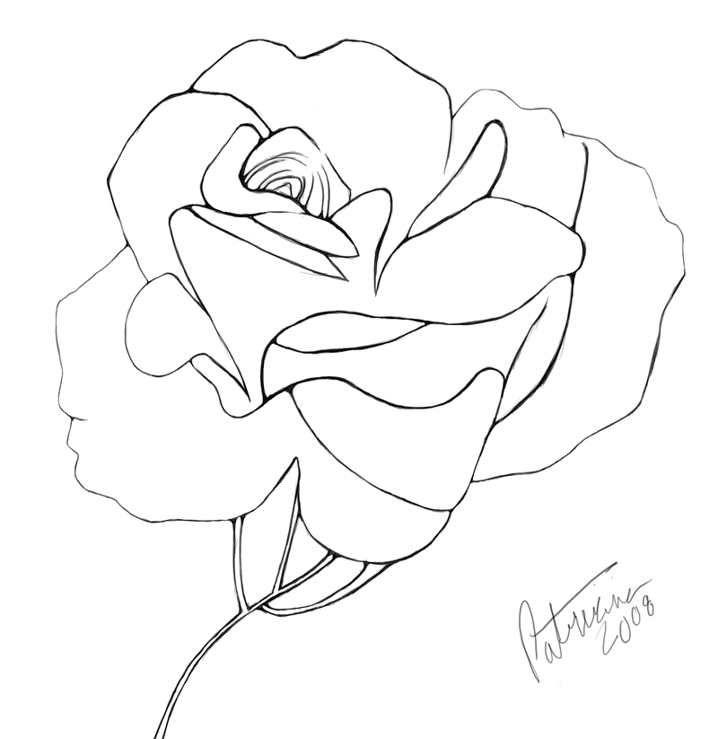 D Line Drawings Value : Blooming rose line art by nisshoku on deviantart