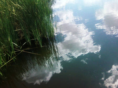 the skys in the water