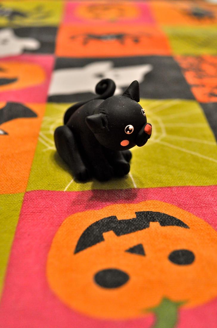 HB 5: Little Black Cat by Misty-Dawn