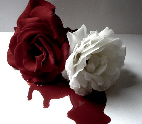 Blood Roses VI by darkryan2030