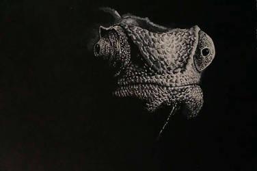 Chameleon by Gonsart