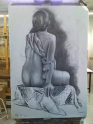 Study Figure