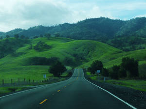 Into the Hills