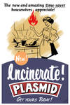 Incinerate Plasmid