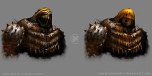 Helm and armour concepts