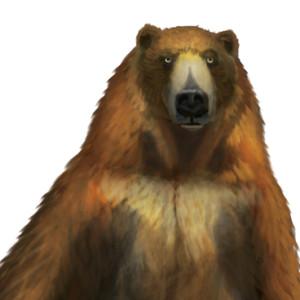 Colin-Ashcroft's Profile Picture