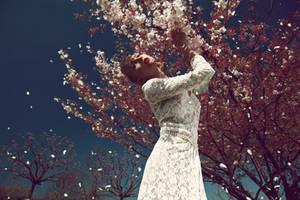cherry blossom tree by Rinksy
