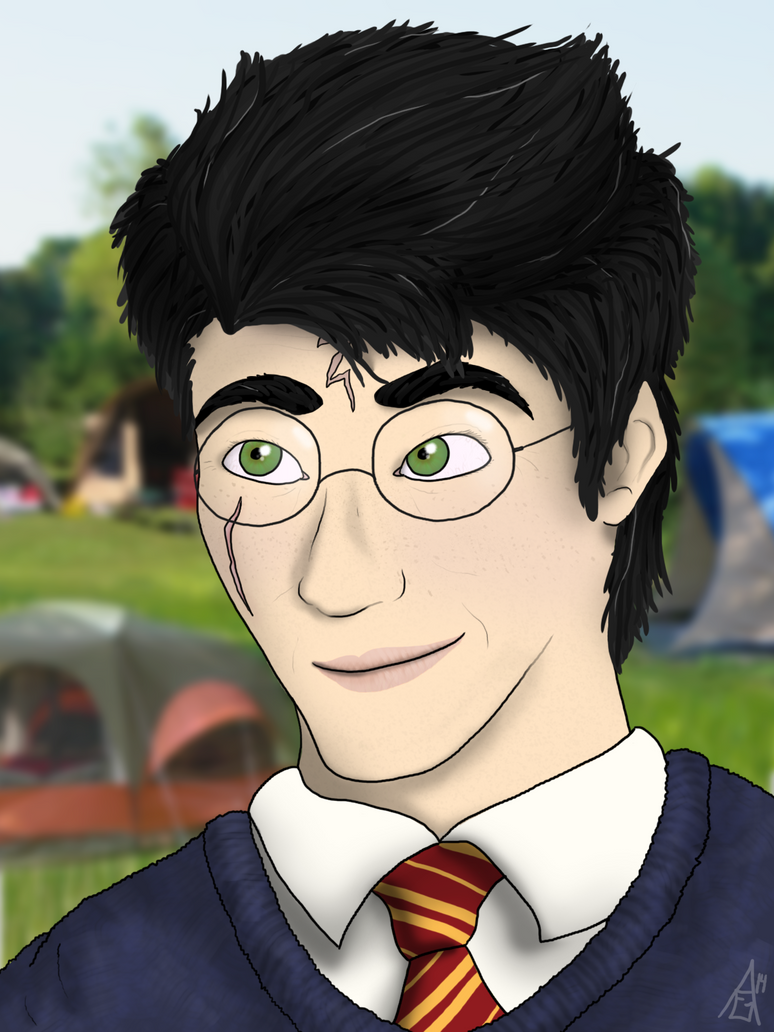 Harry Potter - Auror by TheAmbears