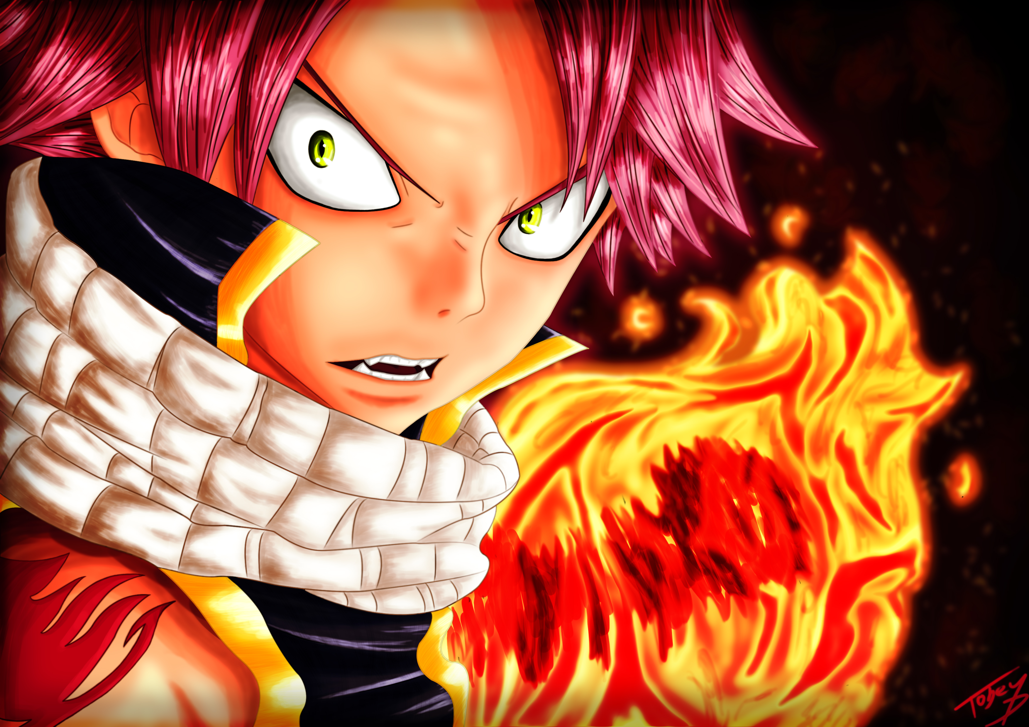 All About Fairy Tail