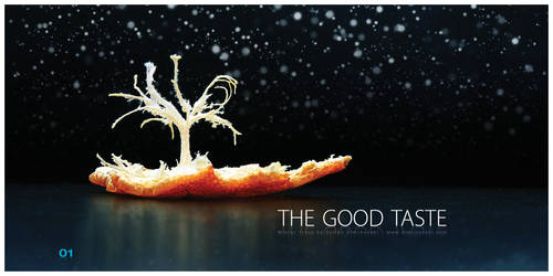 Winter Trees: The Good Taste