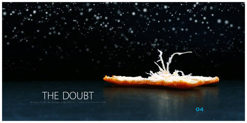 Winter Trees: The Doubt