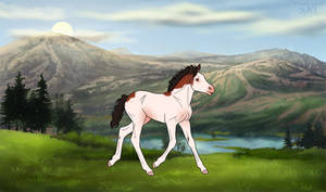 DiRPG Foal | Marlene