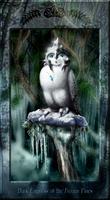 Dark Empress of the Frozen Pines