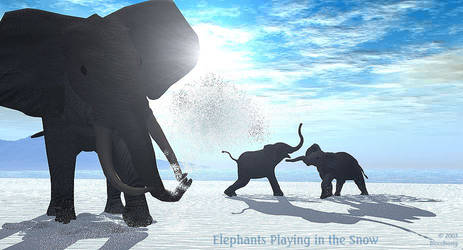 Elephants Playing in theSnow