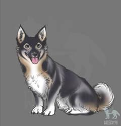 Happiest doggo