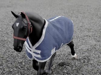 No Colour by horsecrazy9356