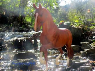 Stream by horsecrazy9356