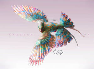 Bird Species Concept