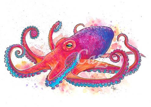 Vibrant Octopus Fine Art Watercolor