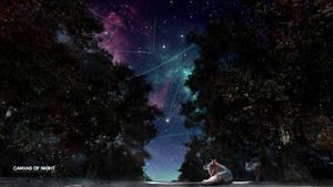 Canvas of Night