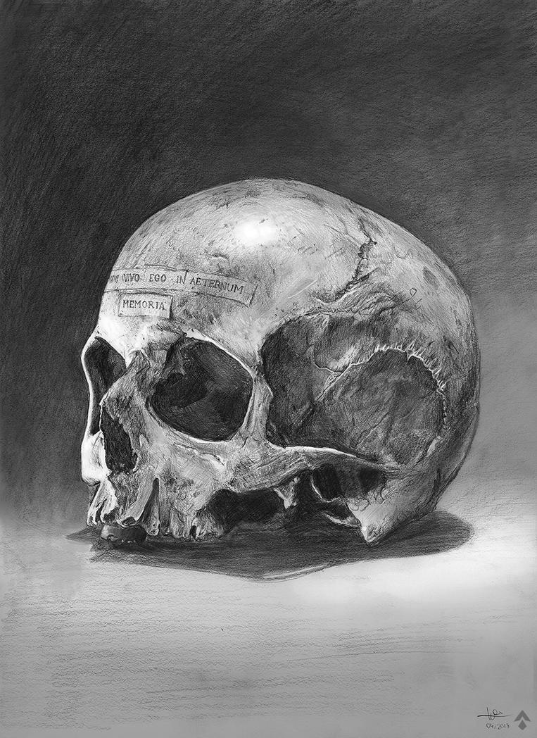 Skull Memoria by DesignSpartan