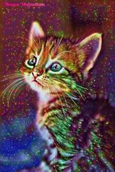 (Galaxy World Project) Kitten by LadyVsArtAndStock