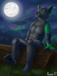 Enjoying the moonlight by Kravuus