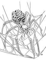 Bone Spider by ProdigyDuck