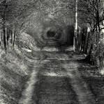 Suburban Wormhole