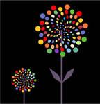 Color Flower