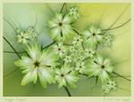 Ragged Flowers by aartika-fractal-art