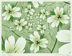 White Flowers by aartika-fractal-art