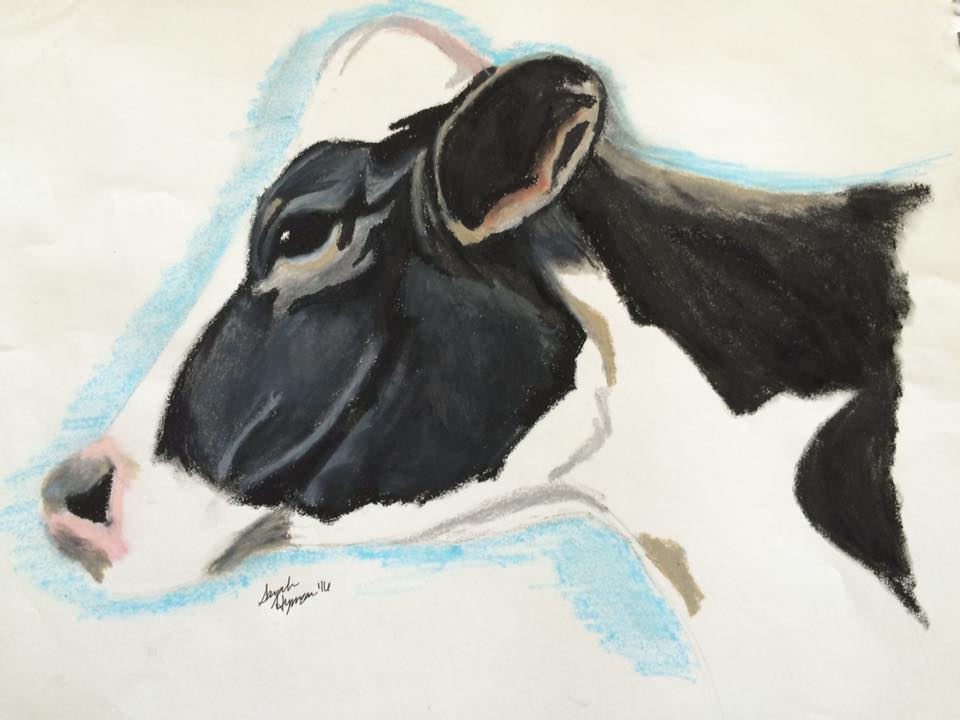 Cow by contradictarylove123