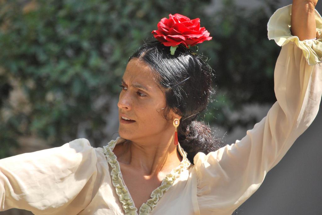 Flamenco dancing by ReneHaan