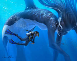 #MerMay Orca