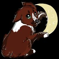 Moon tag