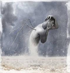 flightless dreams