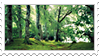 Stamp Forest