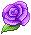 F2U Purple Rose
