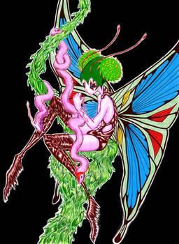 Minimundo 05 - Fairy - Microworld 05