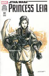 Princess Leia Boushh Sketchcover by nguy0699