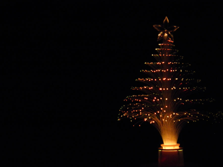 Image for Fiber Optic Christmas Trees