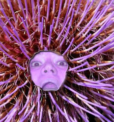Purple Hole I by ValTriumph