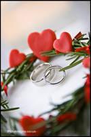 ring detail by PGDsx