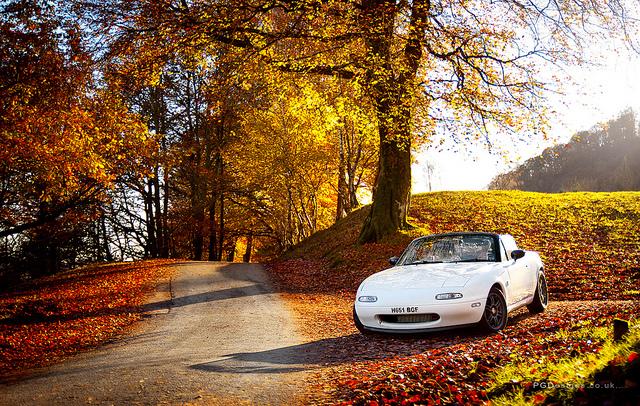 Autumn driver by PGDsx